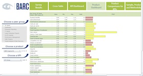 The BI Survey 13 Analyzer screenshot