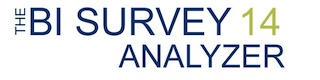 The BI Survey 14 Analyzer