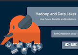 Hadoop and data lakes