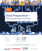 Data Preparation Survey cover