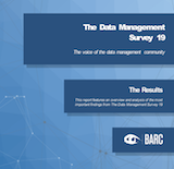 The Data Management Survey 19