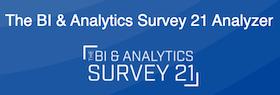 The BI & Analytics Survey 21 Analyzer